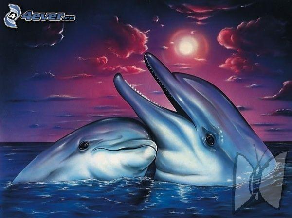 delfíny, láska, kreslené, voda