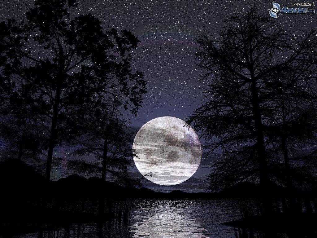 Mesiac nad hladinou, noc, stromy, hviezdy