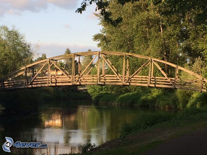 Bothell Bridge, wooden bridge, River, forest