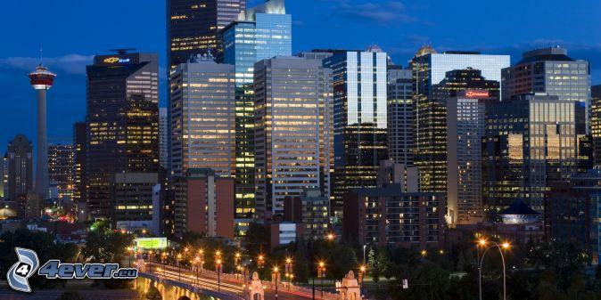 Calgary, skyscrapers, night city