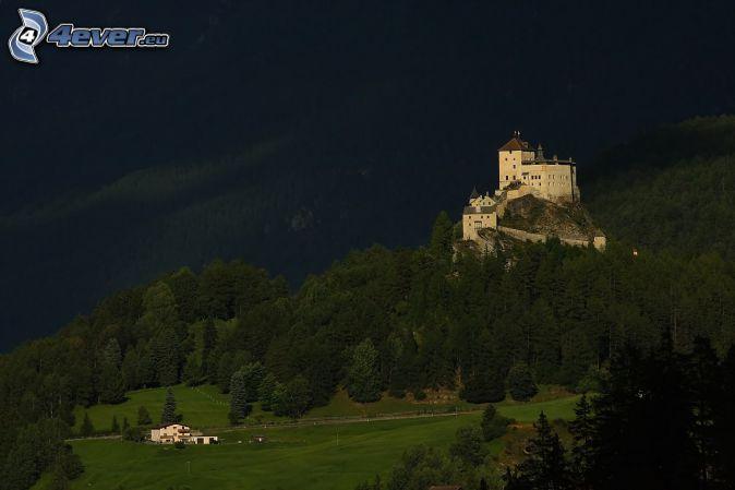 castle Tarasp, evening, coniferous forest