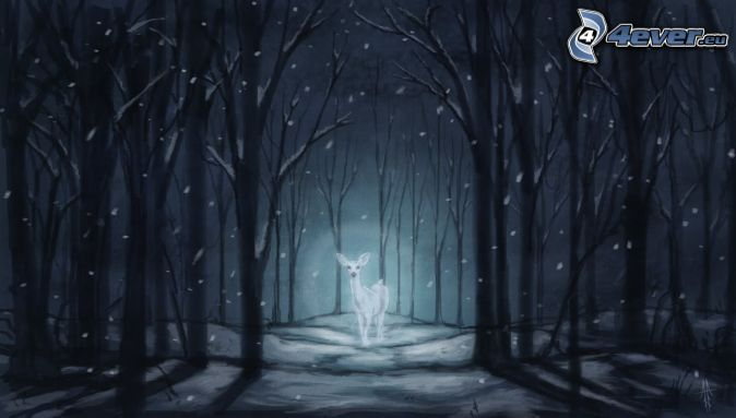 doe, forest at night, snow