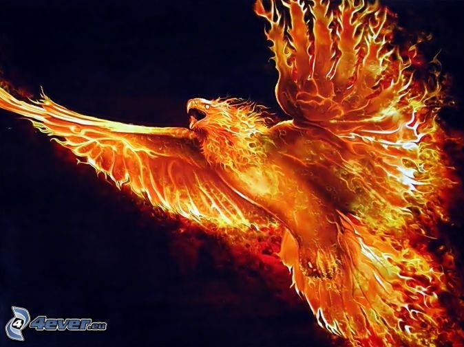 FULL WALLPAPER: Phoenix bird wallpaper