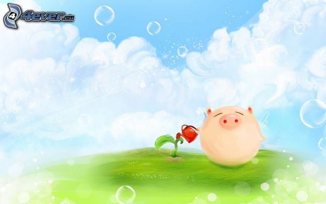 pig, herb, watering-can, clouds, bubbles
