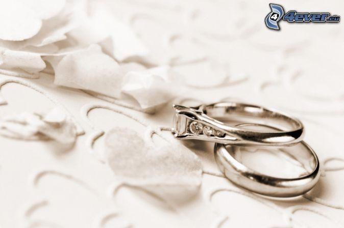 wedding rings, hearts, petals
