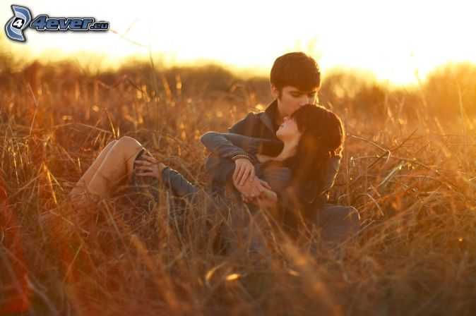 couple, field, sunset, kiss