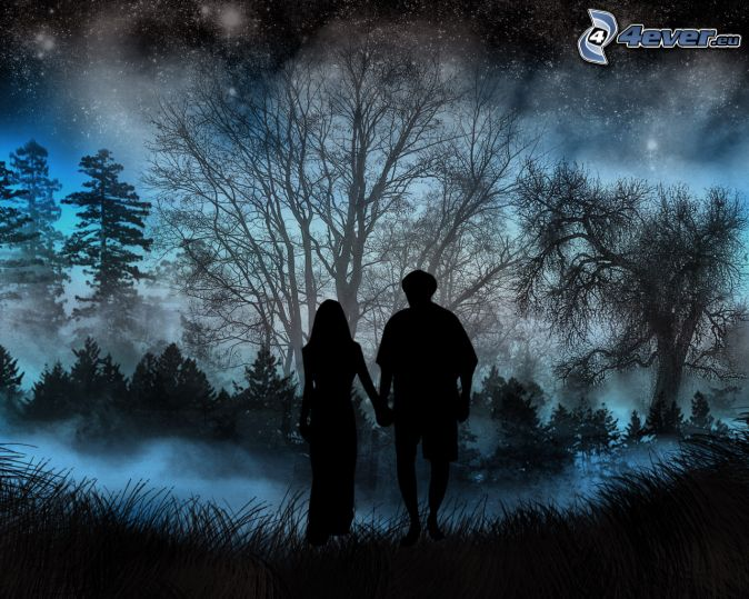 silhouette of couple, forest, night