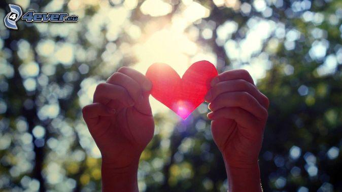 heart, hands