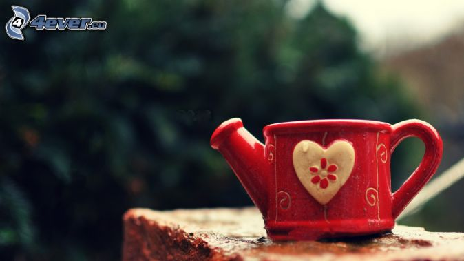 watering-can, heart