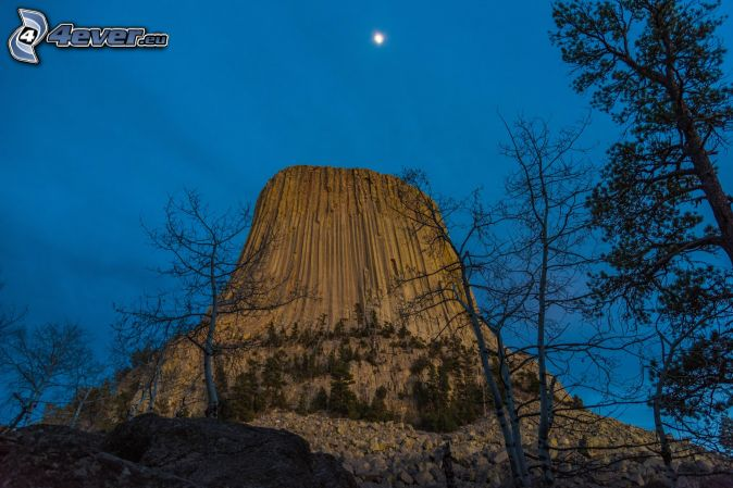 Devils Tower, rocks, dry trees, coniferous trees, moon, evening