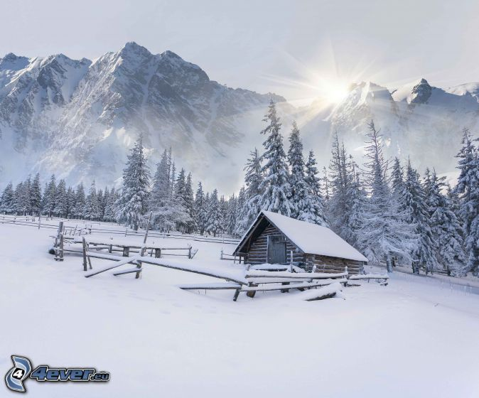 snowy cottage, snowy trees, snowy mountains, sun