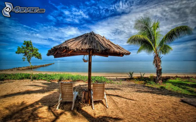 parasol, lounger, palm trees, open sea, HDR