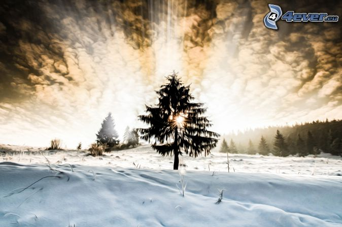 silhouette of tree, sunbeams, clouds, snowy meadow