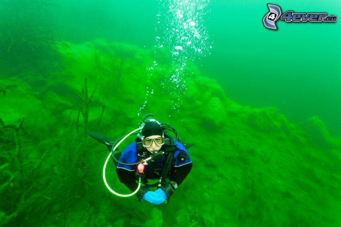 diver, sea-bed
