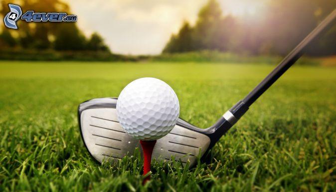 golf, golf ball, golf club, lawn