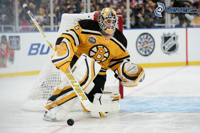 goalie, Boston Bruins