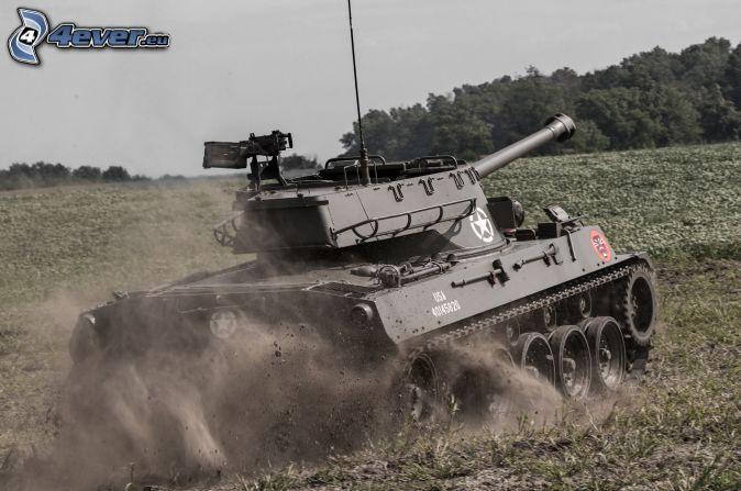 M18 Hellcat, tank, field