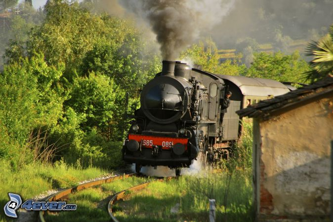 steam train, green trees