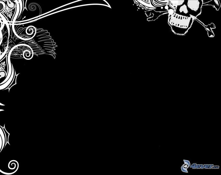 background, white lines, skull