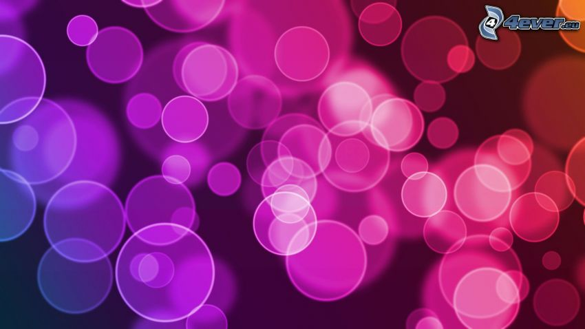 circles, pink background