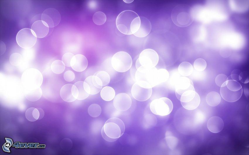 circles, purple background