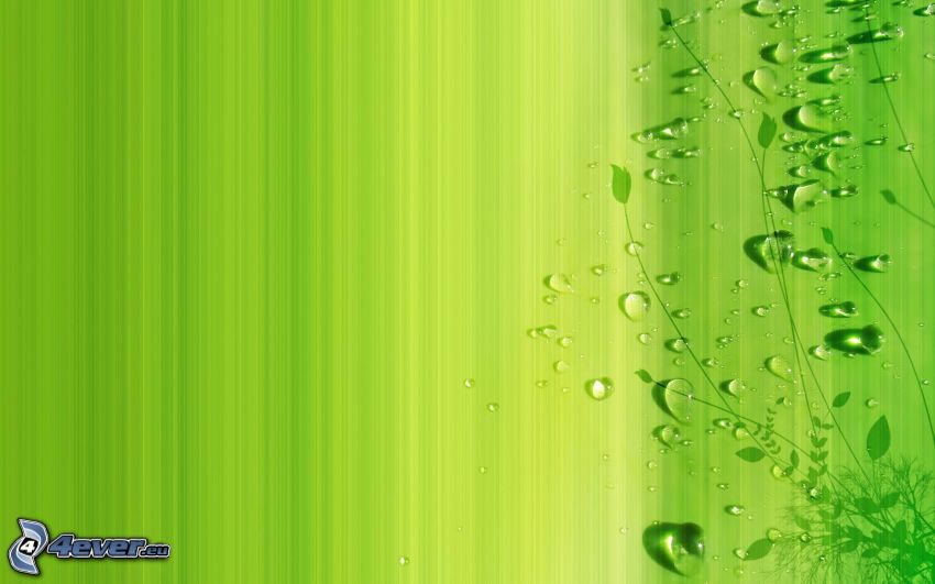 green background, drops of water, plant
