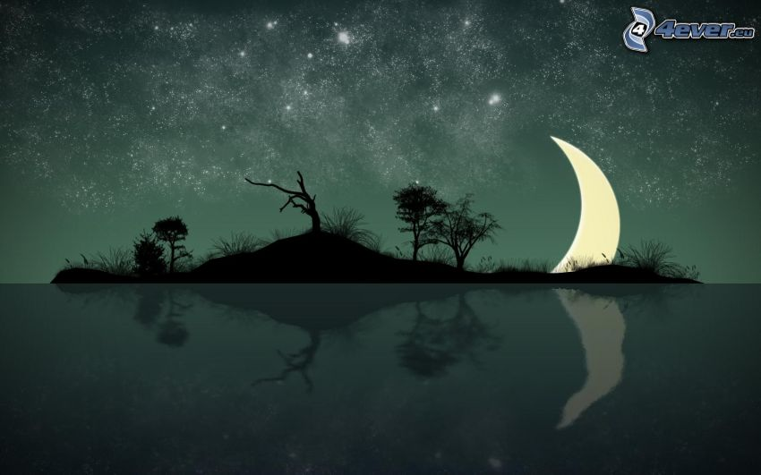 island, silhouettes of the trees, moon, reflection, starry sky, cartoon