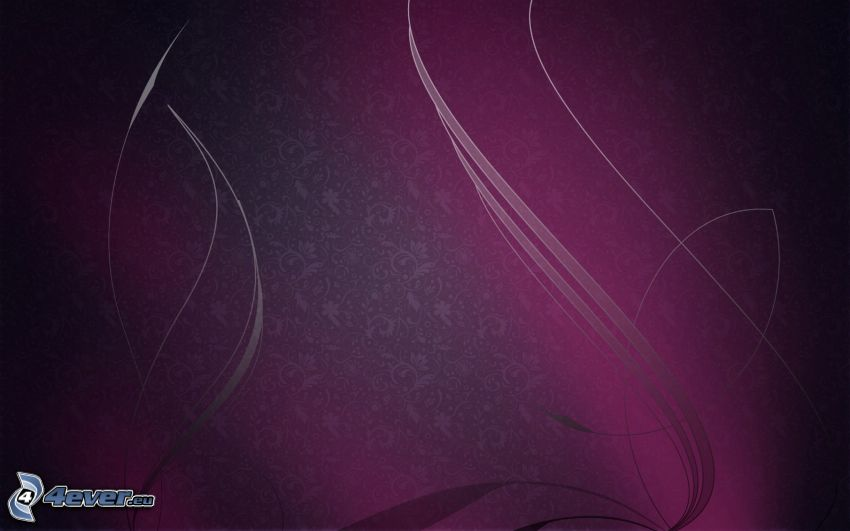 lines, purple background