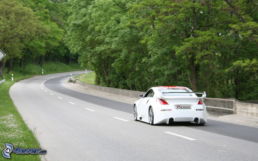Nissan 350Z, road through forest