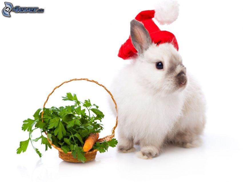 bunny, basket, Santa Claus hat, carrot