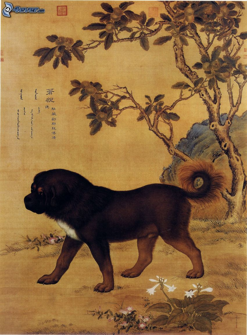 Tibetan mastiff, cartoon, chinese marks, tree