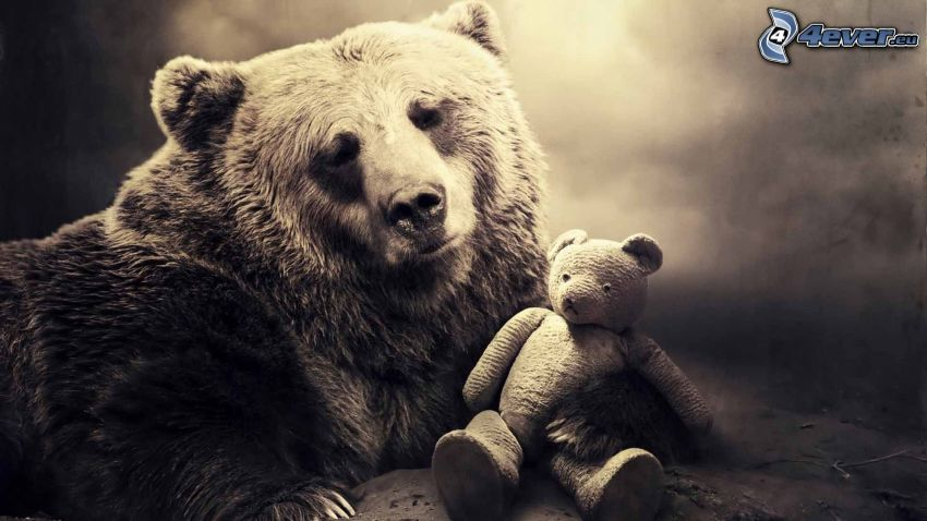 grizzly bear, teddy bear, sepia