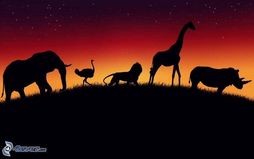 silhouettes of elephants, silhouette of giraffes, rhino, lion, emu, red sky