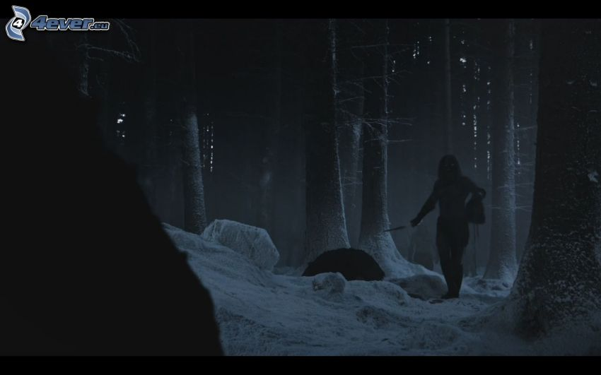 A Game of Thrones, dark forest, silhouette