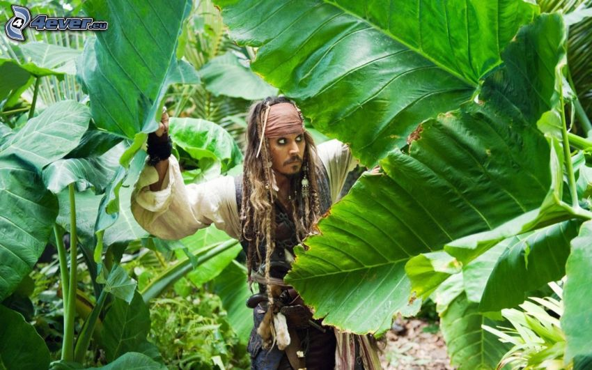 Pirates of the Caribbean, Jack Sparrow, green leaves