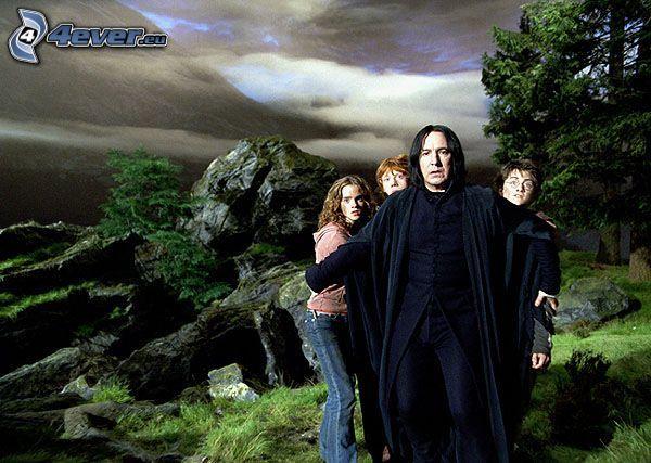 Severus Snape, Harry Potter, Ron Weasley, Hermione Granger, forest, rock