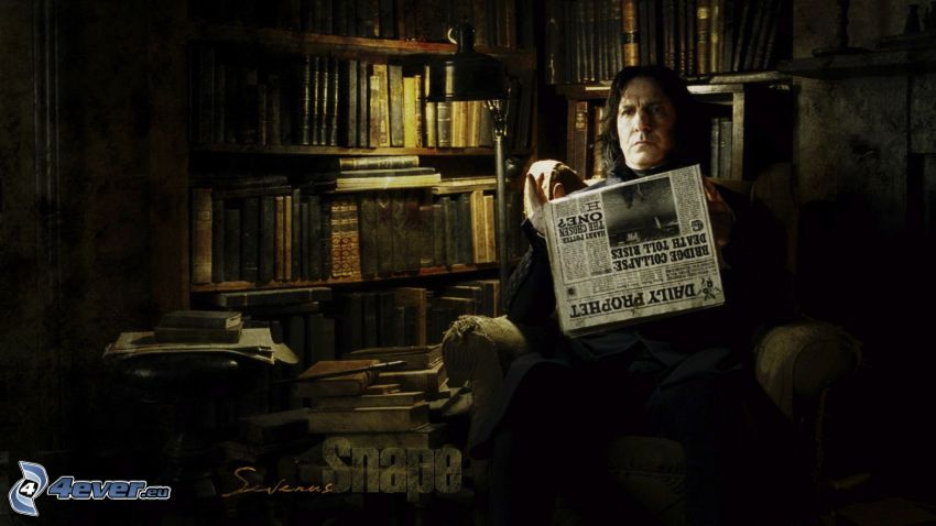 Severus Snape, Harry Potter