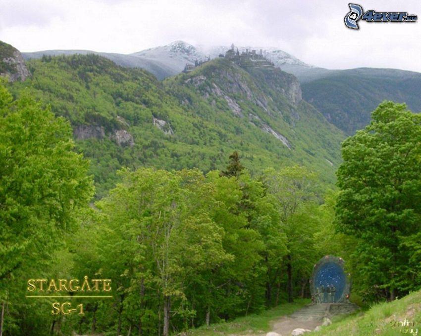 Stargate SG-1, forest, nature