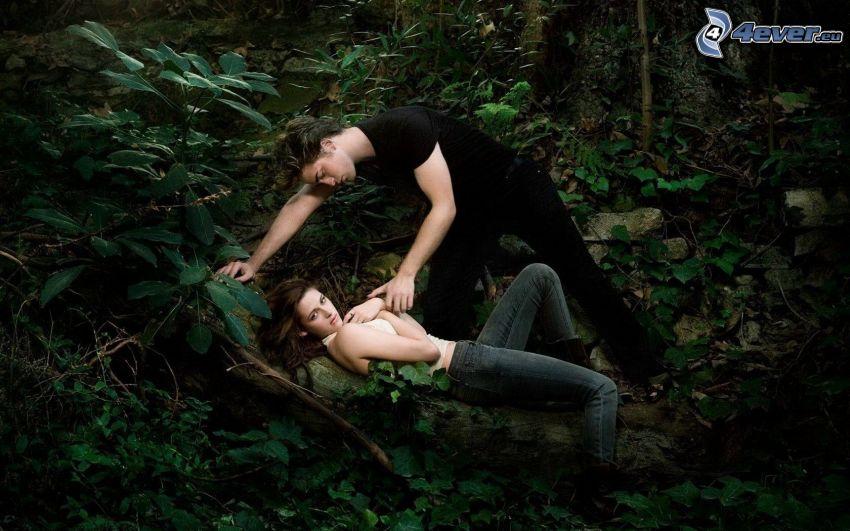 Twilight, Edward Cullen, Bella Swan, greenery
