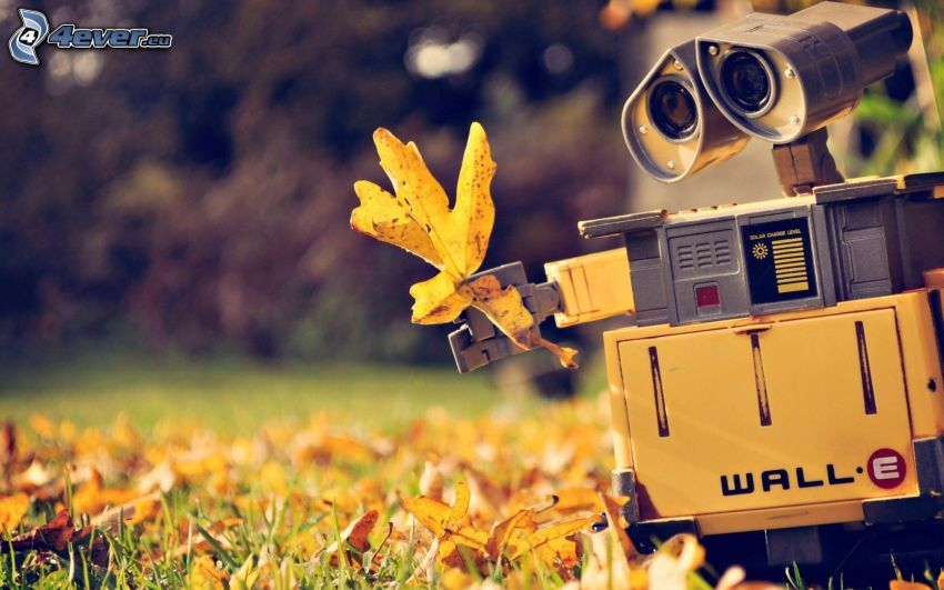 WALL·E, autumn leaves