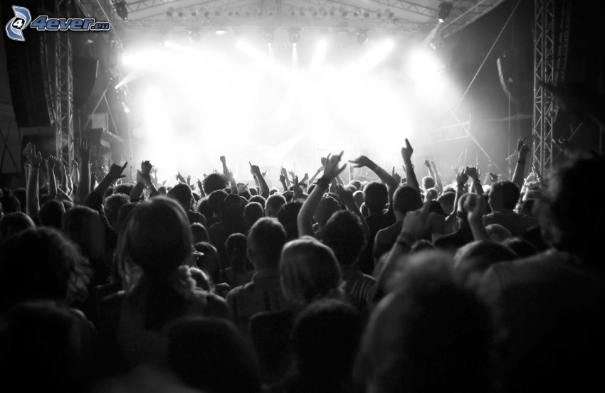 crowd, concert, black and white photo