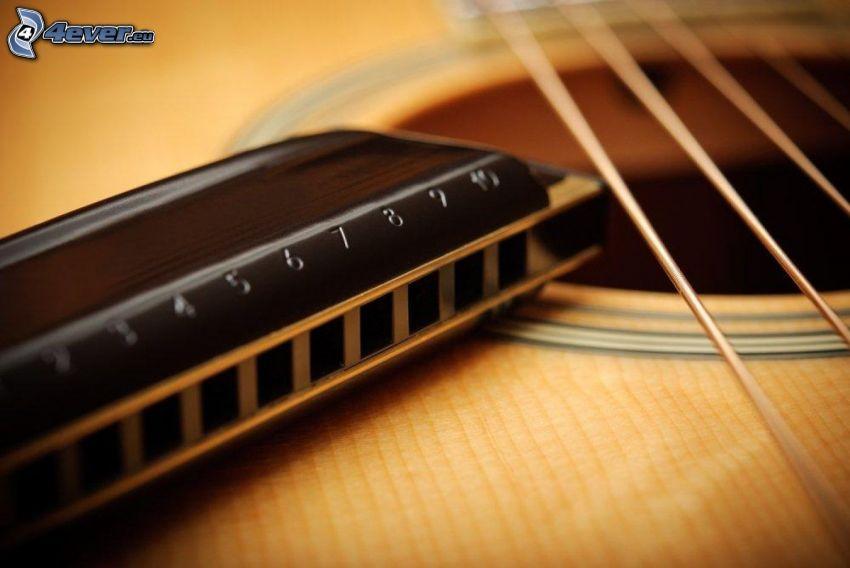 harmonica, guitar, strings