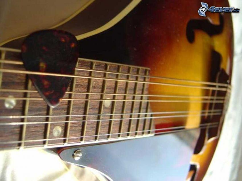 mandolin, picks