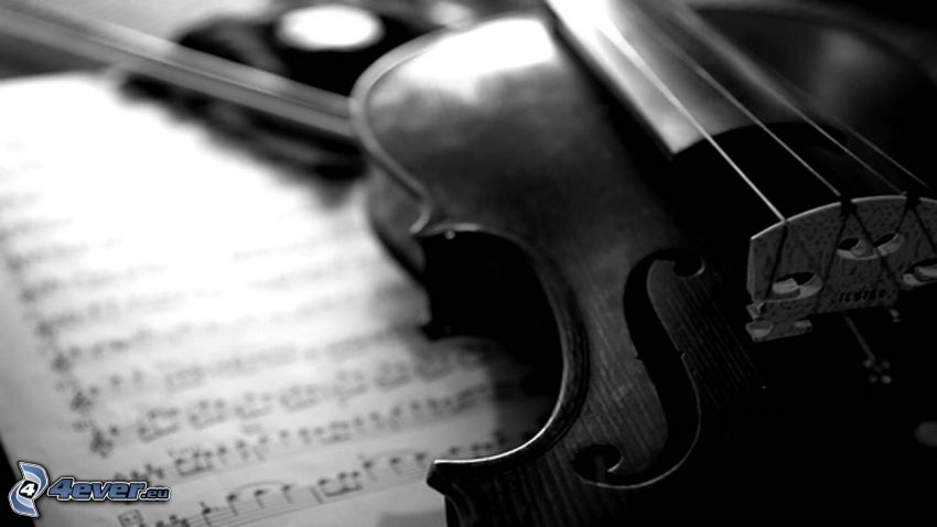 violin, sheet of music, black and white photo
