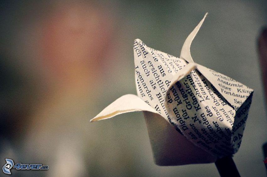 origami, rose