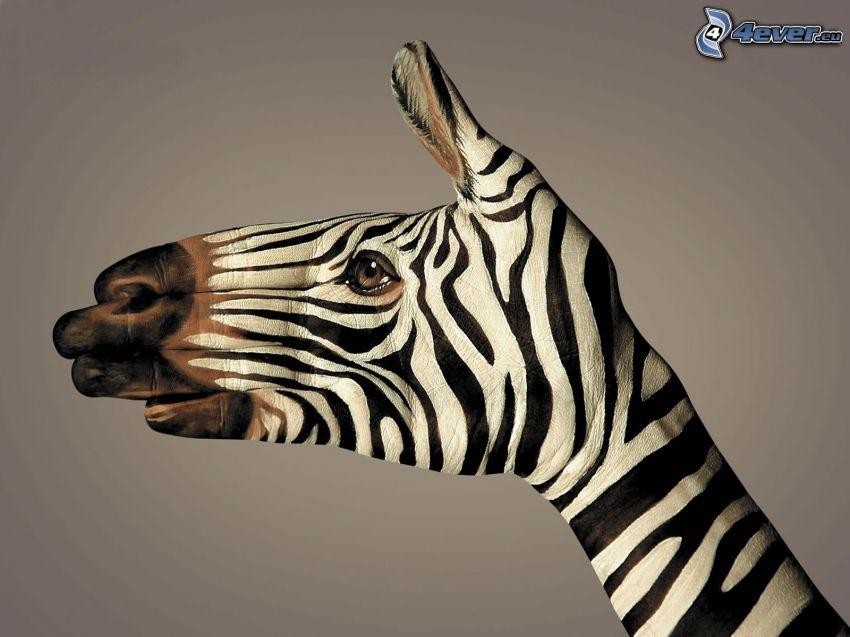 zebra, hand, bodypainting