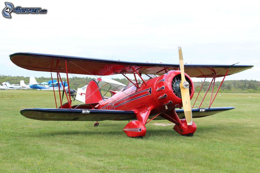biplane, lawn