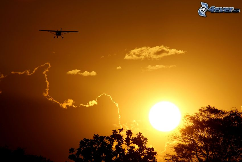 small sport aircraft, silhouette of the aircraft, sunset, silhouettes of the trees