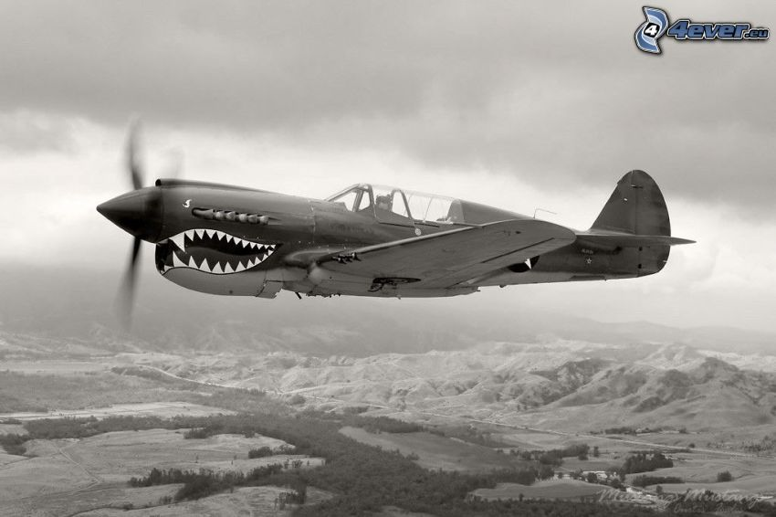 P-51 Mustang, black and white photo