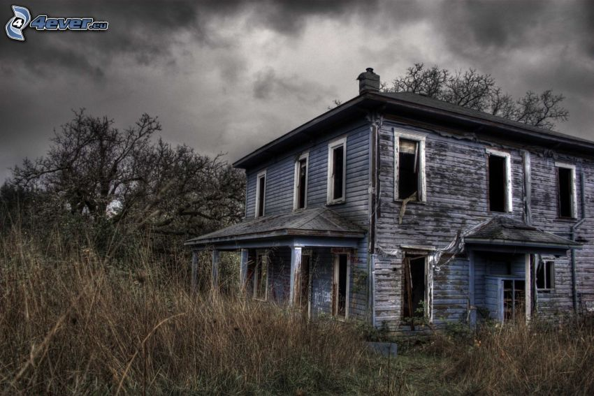 abandoned house, old wooden house, dry grass, high grass